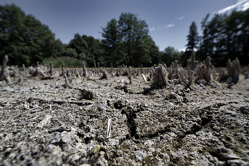 Drought in Central Europe. Dried up field North of Leipzig, Germany. Photo: André Künzelmann/UFZ