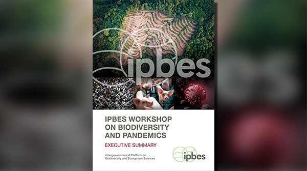 Cover: IPBES WORKSHOP ON BIODIVERSITY AND PANDEMICS. Source: IPBES