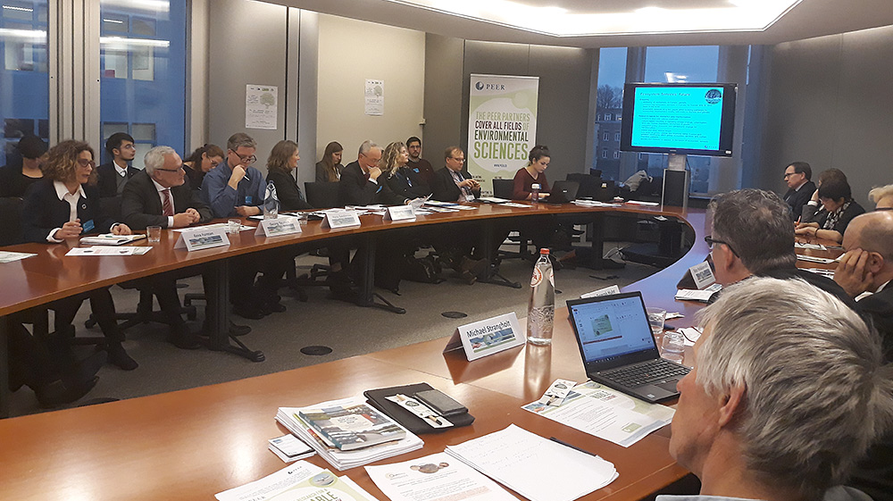 PEER directors meet representatives of EU Parliament in Brussel 2018. Source: PEER